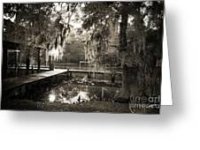 Bayou Evening Greeting Card