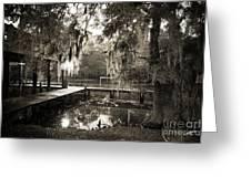 Bayou Evening Greeting Card