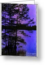 Bayou In Moonlight Greeting Card