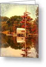 Bayou Scenery Greeting Card