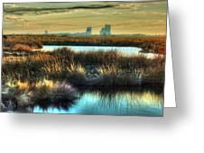 Bayou Sunrise Greeting Card