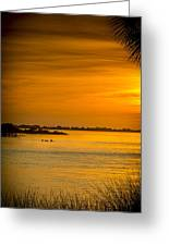 Bayport Dolphins Greeting Card by Marvin Spates