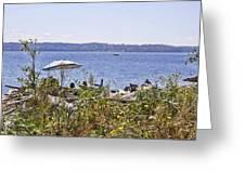Beach At Maury Island Greeting Card