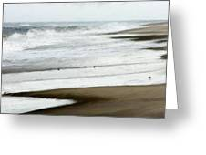 Beach At Pea Island Greeting Card