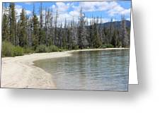 Beach At Redfish Lake Greeting Card