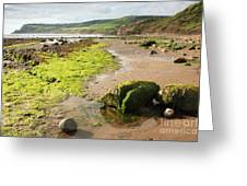 Beach At Robin Hoods Bay Greeting Card by Deborah Benbrook