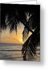 Beach At Sunset 1 Greeting Card