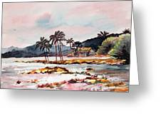 Beach At Waikiki Greeting Card
