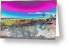 Beach Blindness Greeting Card by Annette Allman