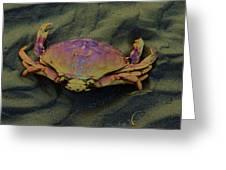 Beach Crab Greeting Card by Helen Carson