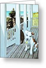 Beach Dog 1 Greeting Card