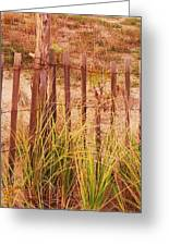 Beach Dune Fence At Cape May Nj Greeting Card