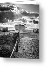 Beach Entrance To Old Glory - Black And White Greeting Card by Ian Monk