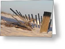 Beach Fencing Greeting Card