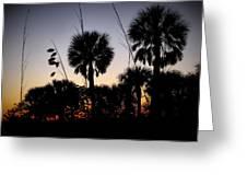 Beach Foliage At Sunset Greeting Card