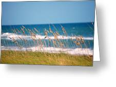 Beach Front 001 Greeting Card