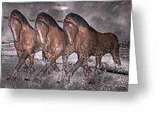 Beach Horse Trio Night March Greeting Card by Betsy Knapp