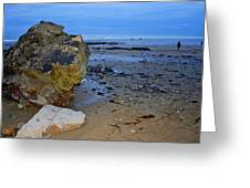Beach Landing Greeting Card
