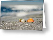 Beach Lovers Greeting Card