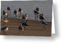 Beach Meeting Greeting Card