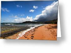 Beach Of Color Greeting Card