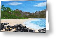 Beach On Helicopter Island Greeting Card