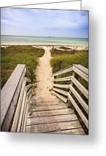 Beach Path Greeting Card by Adam Romanowicz
