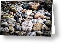 Pebbles On Beach Greeting Card