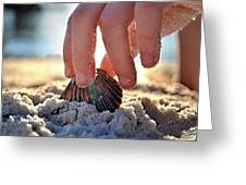 Beach Play Greeting Card by Laura Fasulo