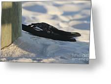 Beach Sandals 1 Greeting Card