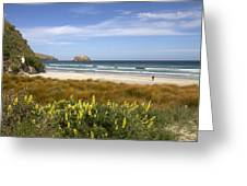 Beach Scene Otago Peninsula South Island New Zealand Greeting Card