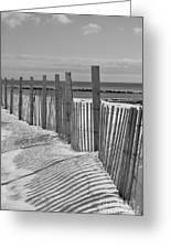 Beach Snow  Greeting Card
