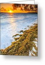 Beach Sunrise Greeting Card
