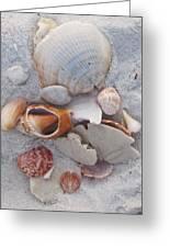 Beach Treasures 2 Greeting Card