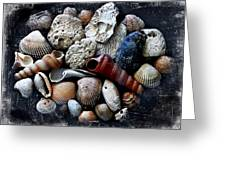 Beach Treasures Greeting Card