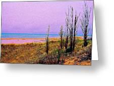 Beach Trees Greeting Card
