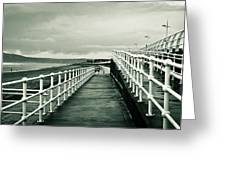 Beach Walkway Greeting Card by Tom Gowanlock