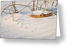Beach Wood And Curly-q Greeting Card