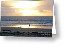 Beachcomber Encounter Greeting Card