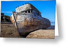 Beached Point Reyes Greeting Card