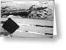 Beachside Warning Horizontal Grayscale Greeting Card