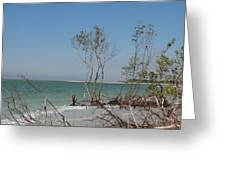 Fort De Soto Beachview Greeting Card