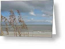 Beachview With Seaoat  Greeting Card