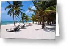 Beachy Belize Greeting Card
