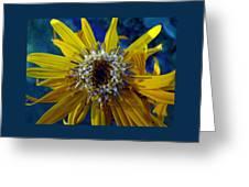 Beaded Flower Greeting Card