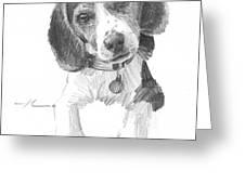 Beagle Puppy Pencil Portrait Greeting Card
