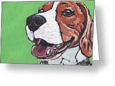 Beagle Timo Greeting Card