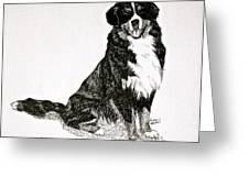 Beaming Berner Greeting Card