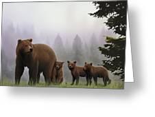 Bear And Cubs Greeting Card
