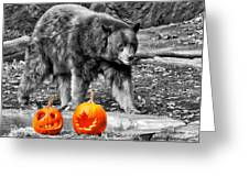 Bear And Pumpkins Too Greeting Card